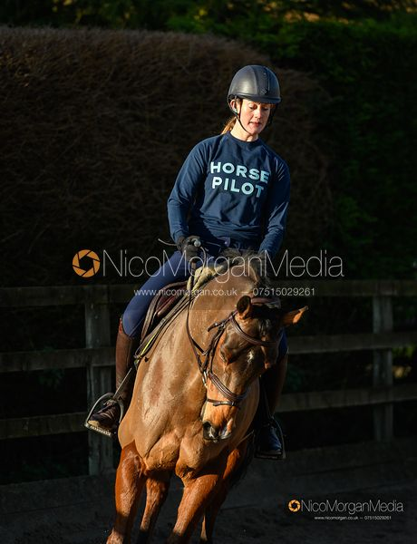 Sponsor's image for Horse Pilot
