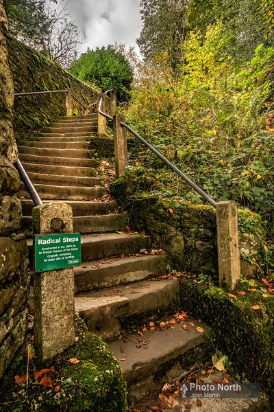 KIRKBY LONSDALE 10A - The Radical Steps