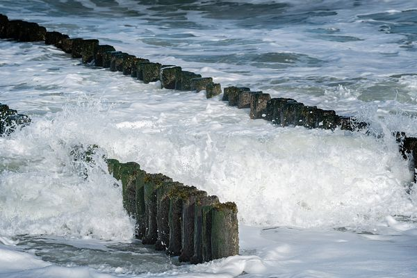 Breaking waves and wooden breakwater poles close-up