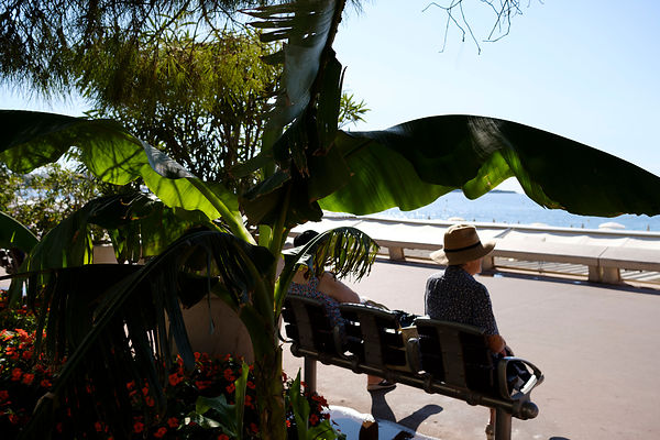 French Riviera, one day in Cannes