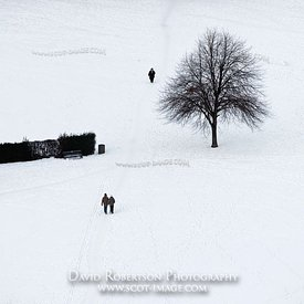 Image - Walkers and tree in snow