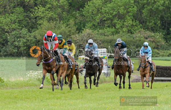 POETRY EMOTION (Dale Peters) - Race 6 - Open Maiden - The Fitzwilliam at Dingley