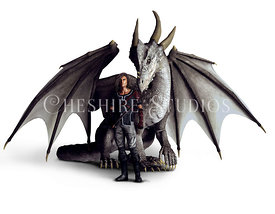 Dragon Rider and White Dragon