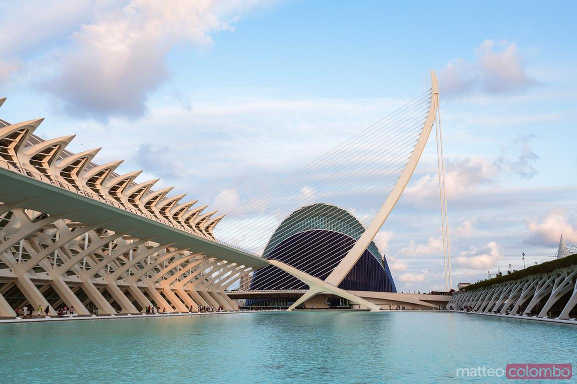Museum of Science and bridge, City of Arts and Sciences, Valencia