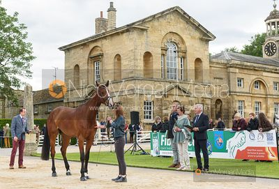 Susie Berry and RINGWOOD LB at the trot up, Equitrek Bramham Horse Trials 2019