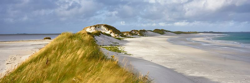 Image - Marram grass and sand dunes, Tres Ness beach beside the Bay of Newark, Sanday, Orkney, Scotland