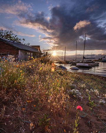 Late_evening_light_on_an_Exe_shoreline_-_Exmouth