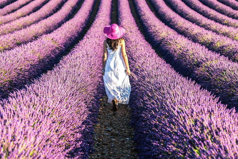 Woman with white dress in lavender field