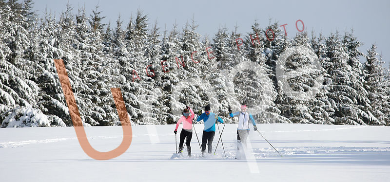 Photo de skating avec figurants