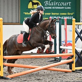 15/03/2020 - Class 6 - Unaffiliated showjumping - Brook Farm training centre - UK