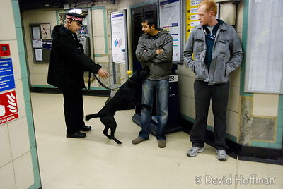 071129_DogDrugCheck_011 Police officers conduct a drug check with sniffer dogs at Mile End Underground station, London. Decem...