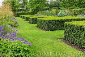 Clipped topiary Buxus cubes - Box - in The Spring and Summer Box Borders at Scampston Hall Walled Garden, North Yorkshire, de...