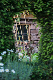 Potting shed viewed through window cut into hedge