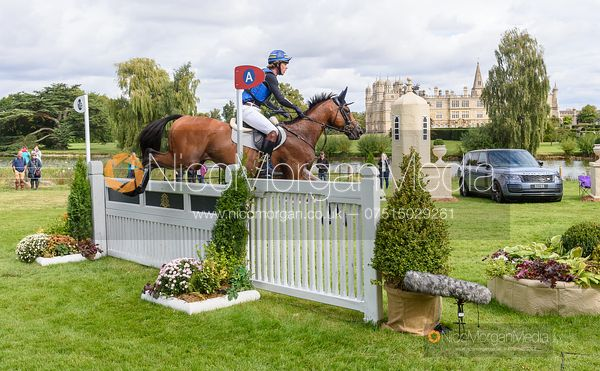 Ludwig Svennerstal and STINGER - Cross Country - Land Rover Burghley Horse Trials 2019