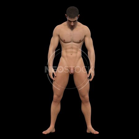 cg-body-pack-male-art-nude-neostock-19