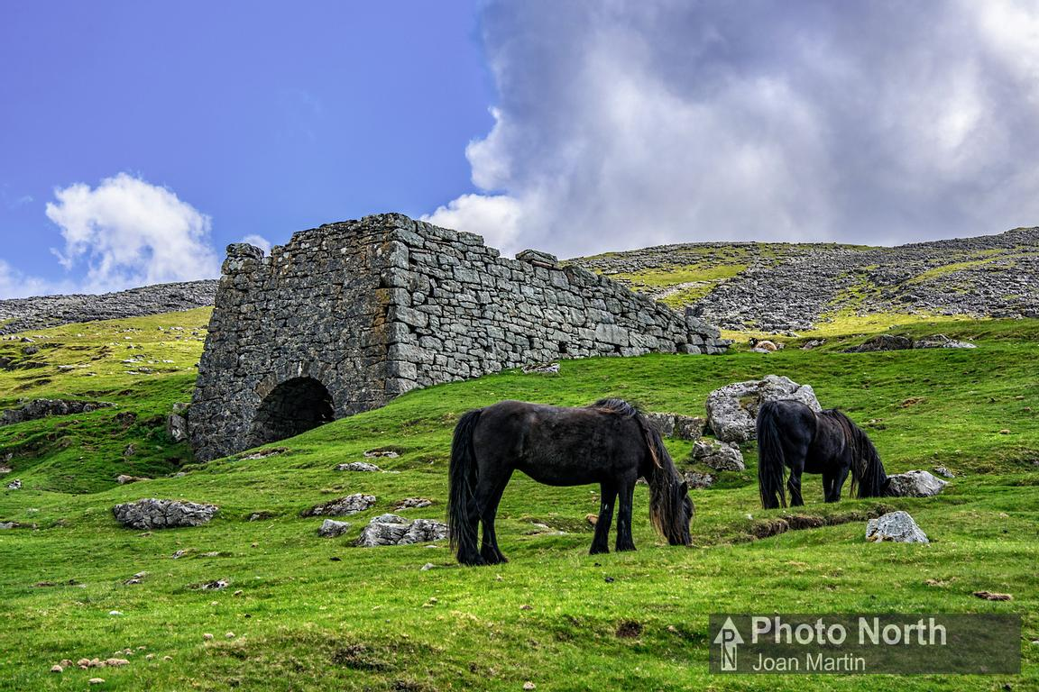 RAVENSTONEDALE 32A - Lime kiln and fell ponies at Fell End