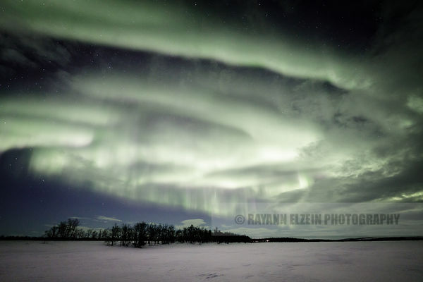 Strong aurora and clouds above trees in the north of Lapland, Finland