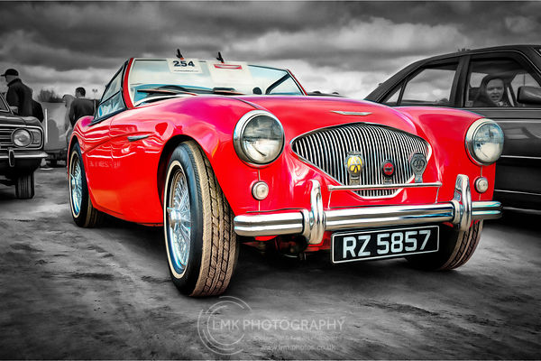 Austin-Healey 100 Painting
