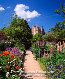 Image - June Border, Crathes Castle Garden, Aberdeenshire, Scotland