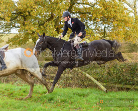 Alex Tordoff jumping a fence at Wilson's - Cottesmore Hunt Opening Meet 2019