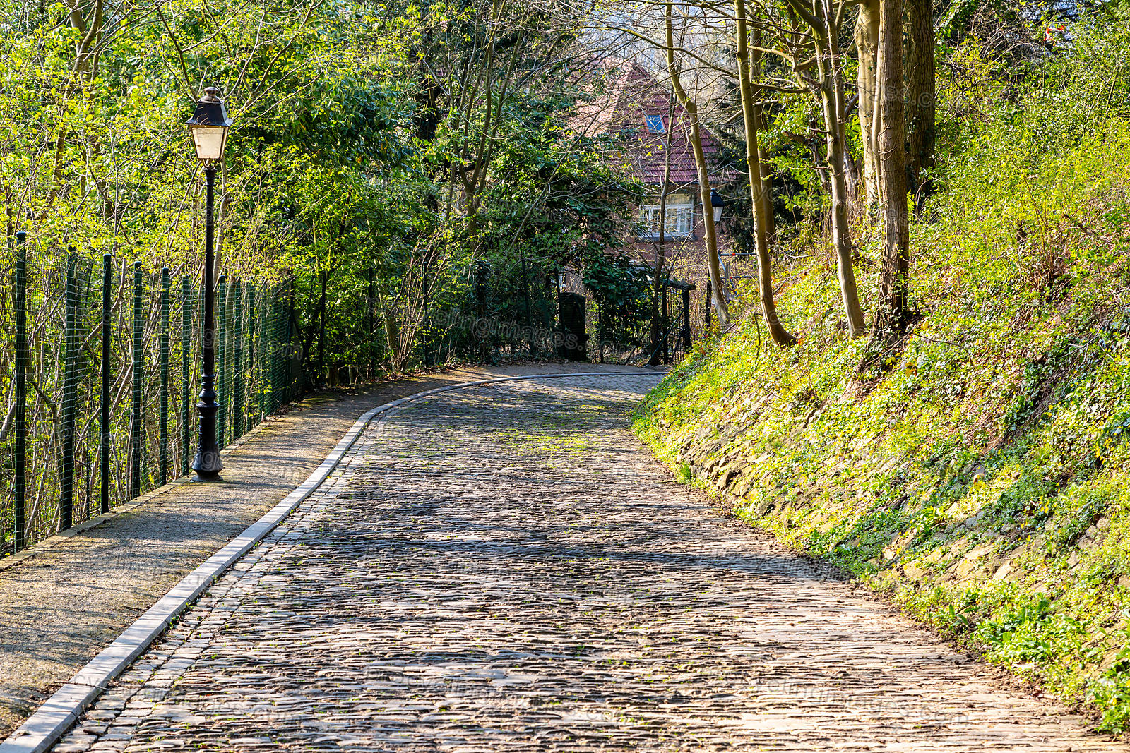 Flandres Cobblestone Road