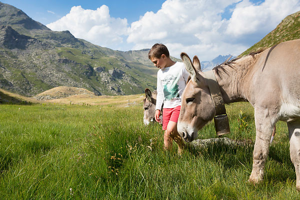 "Tom, 9 ans, au refuge des Marches, situé sur la commune de Orelle en Maurienne, Savoie, France / Tom, 9, au ""Refuge des march..."
