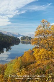 Image - Glen Affric, Highland, Scotland, Autumn colours