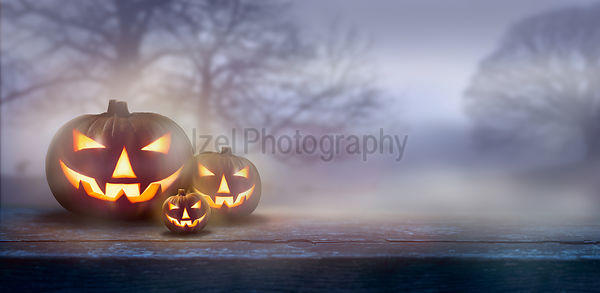 A ghostly dusk in the countryside with spooky Jack O' Lanterns in the fog with bare trees in the background.