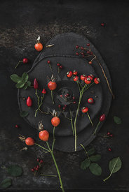 Rose hips by Gabler