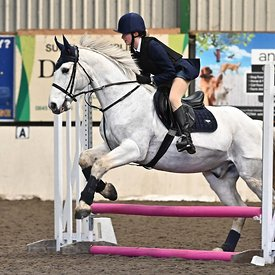 19/01/2020 - Class 3 - Unaffiliated showjumping - Brook Farm training centre