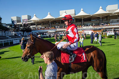Aniseed_Photo_-_EN_Raceday_2019-194