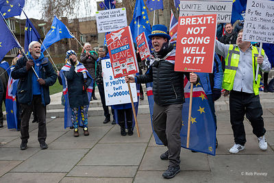 Brexit Protesters