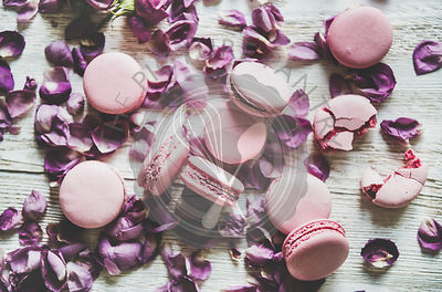 Sweet pink macaron cookies and lilac rose petals, top view