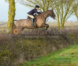 Katie Robinson jumping a hedge at Sheepwash