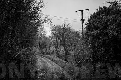 Holloways_and_Tramways-1000474