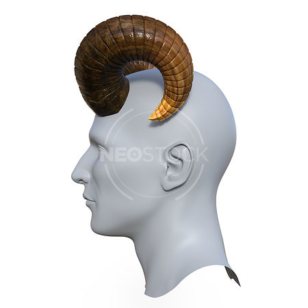 Goat_Horns_-_Profile