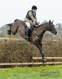 jumping a hedge near the meet