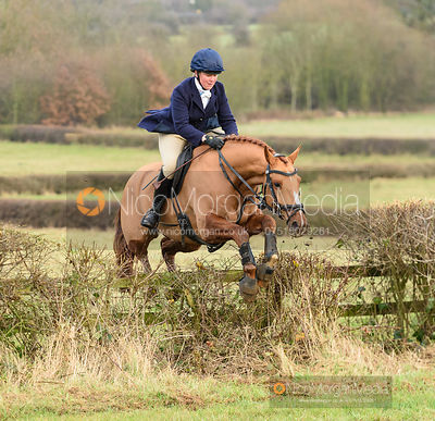 Emilie Chandler jumping a hedge at Barrowcliffe. The Quorn Hunt at Barrowcliffe 6/12