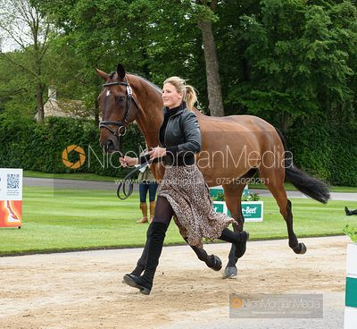 Gaby Vaughan and CUFFLINK at the trot up, Equitrek Bramham Horse Trials 2019
