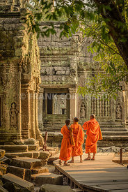 Three monks walking through the Buddhist temple of Ta Prohm within the Angkor Wat complex in Cambodia.