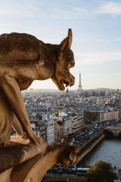 Notre Dame gargoyle and city of Paris, France