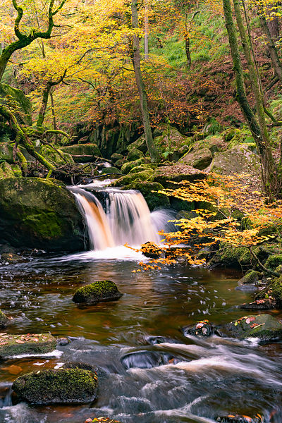 Autumn morning in Padley Gorge