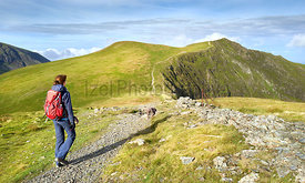 A closeup of a hiker and their dog walking along a mountain path towards the summit of Hopegill Head In the Lake District, En...