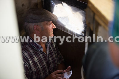 11th September, 2014.Camera at the Ringside - Kingscourt, County Cavan. Pictured is seller Aiden Brennan from Dundalk in the ...