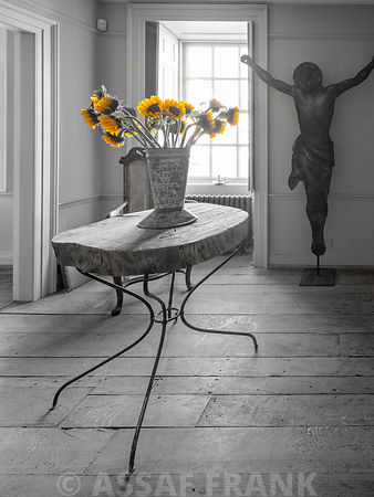 Sunflowers in a vase on table