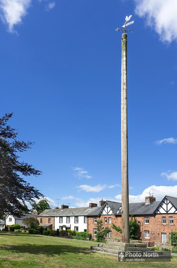 TEMPLE SOWERBY 12A - Maypole