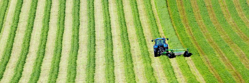 Image - Tractor cutting grass in field for hay or silage