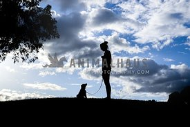 Silhouette of Puppy and Owner