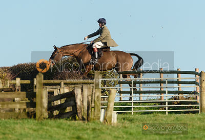 Harry Arkwright jumping a fence off Hades Lane. The Quorn Hunt at Fox Covert Farm 10/1