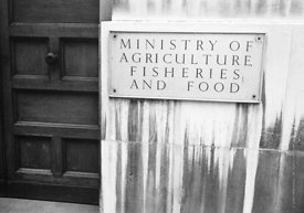 #124462,  Nameplate for the Ministry of Agriculture, Fisheries & Food, London, 1973.